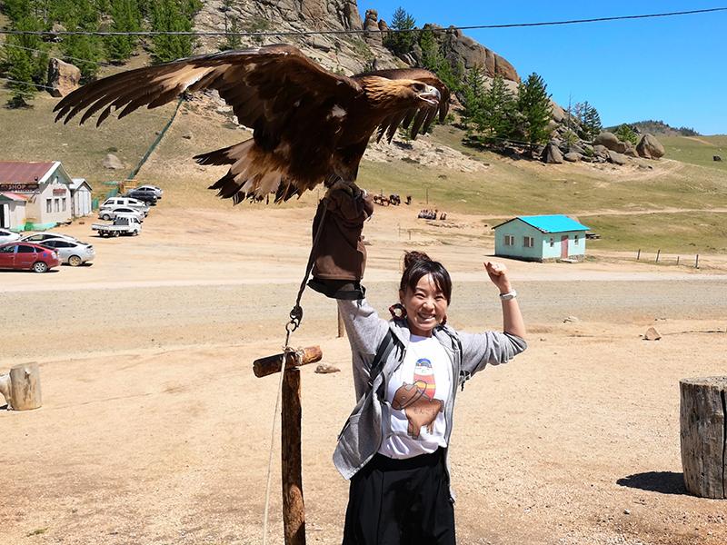 モンゴル旅行 亀石 テレルジ国立公園